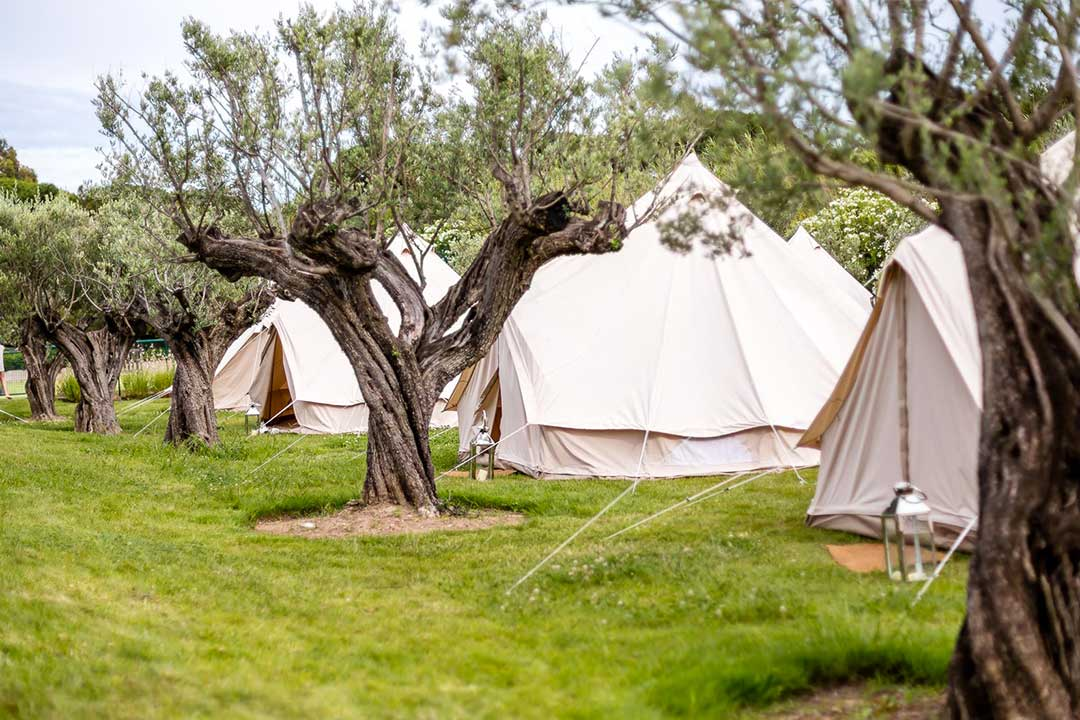 wedding camping anticipation securite - Garanties